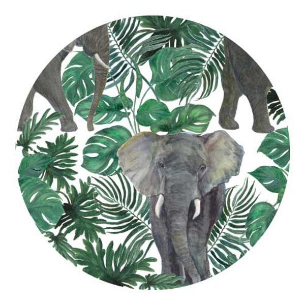 Individual redondo Elefante
